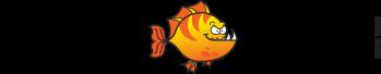 Waterloo Piranhas Swim Team